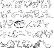 动物silouettes 库存图片