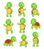 动画片乌龟 逗人喜爱的孩子乌龟,野生动物字符集 草龟字符传染媒介动物例证收藏 皇族释放例证