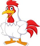 动画片在白色背景隔绝的雄鸡摆在 皇族释放例证