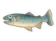 动画片愉快的例证鳟鱼 免版税库存照片
