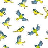 动画片样式北美山雀春天鸟五颜六色的无缝的样式 向量例证