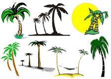动画片棕榈树 免版税库存图片