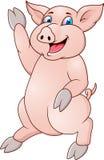 动画片滑稽的猪 图库摄影