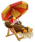 动画片火鸡鸟坐海滩睡椅 库存图片
