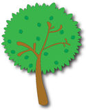 动画片结构树 免版税图库摄影