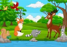 动画片野生动物在密林 向量例证