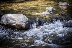 移动的急流在Sedona亚利桑那 库存照片