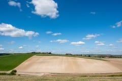 滚动的苏克塞斯乡下的风景看法 免版税库存照片