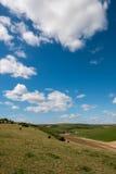 滚动的苏克塞斯乡下的风景看法 免版税图库摄影