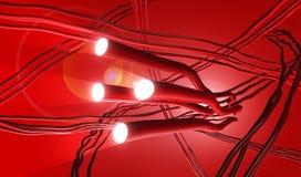 动脉系统的例证与探照灯的 向量例证