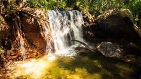 移动远离落入池塘的小瀑布在森林里 影视素材
