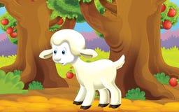 动画片与动物-绵羊的农厂场面 免版税库存图片