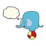 动画片与想法泡影的马戏大象 免版税库存照片