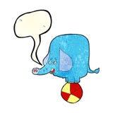 动画片与讲话泡影的马戏大象 免版税库存图片