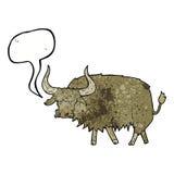 动画片使与讲话泡影的长毛的母牛困恼 图库摄影