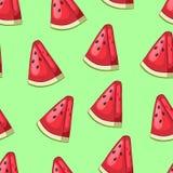 动画片切片与种子的西瓜在绿色背景 库存图片