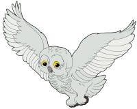 动画片动物-北极猫头鹰-平的着色样式 库存照片