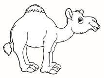 动画片动物-骆驼-讽刺画 库存照片