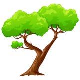 动画片在白色背景的被隔绝的心形的树 库存图片