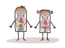动画片夫妇解剖学 库存照片