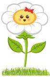 动画片微笑的Chamomille,在白色隔绝的愉快的雏菊 也corel凹道例证向量 库存图片