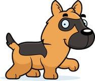 动画片德国牧羊犬走 免版税库存图片