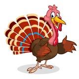 动画片感恩在白色隔绝的火鸡提出 向量 免版税库存图片