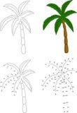 动画片棕榈树 也corel凹道例证向量 加点的着色和小点 图库摄影