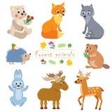 动画片森林动物组装 逗人喜爱的传染媒介集合 免版税库存照片