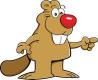 动画片海狸指向 免版税库存图片
