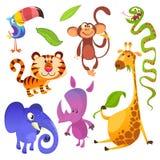 动画片热带动物字符 狂放的动画片逗人喜爱的动物汇集传染媒介 大套动画片密林动物平的传染媒介 免版税图库摄影