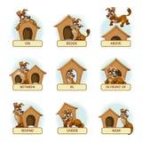 动画片狗用说明的不同的姿势 库存照片