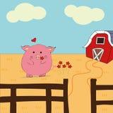 动画片猪,猪,农场 免版税库存图片