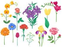 动画片瓣葡萄酒花卉传染媒介花束庭院花植物的自然花卉牡丹例证和夏天 库存照片