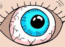动画片蓝眼睛 向量例证
