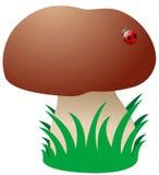 动画片蘑菇 库存图片
