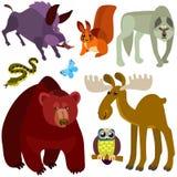 动画片被设置的森林动物 免版税库存照片