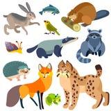 动画片被设置的森林动物 免版税库存图片