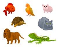 动画片设置与各种各样的宠物 免版税库存图片