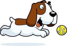 动画片追逐球的贝塞猎狗 图库摄影