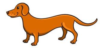 动画片逗人喜爱的达克斯猎犬 库存照片