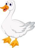 动画片逗人喜爱的鸭子 库存图片