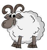 动画片逗人喜爱的绵羊 免版税图库摄影