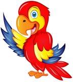 动画片金刚鹦鹉传染媒介例证 库存照片