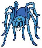 动画片风格化蓝色塔兰图拉毒蛛蜘蛛 库存照片