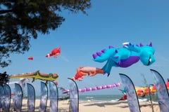 动画片风筝的五颜六色的各种各样的类型在泰国国际风筝节日的2017年 库存图片
