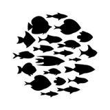动画片鱼汇集背景 免版税图库摄影