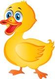 动画片鸭子 免版税图库摄影