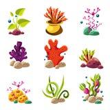 动画片水下的植物和生物