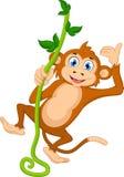 动画片猴子垂悬 免版税库存照片